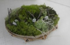 Moss Ring Pillow